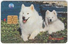MALAYSIA A-604 Chip Telekom - Animal, Polar Fox - Used - Malaysia