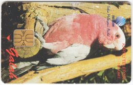 MALAYSIA A-606 Chip Telekom - Animal, Bird, Parrot - Used - Malaysia