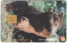 MALAYSIA A-611 Chip Telekom - Animal, Bear - Used - Malaysia