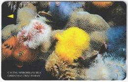 MALAYSIA A-617 Magnetic Telekom - Animal, Sea Life, Christmasworm Tree - 19MTRC - Used - Malaysia
