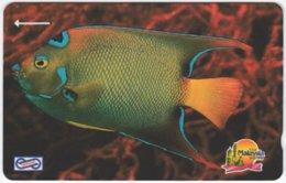 MALAYSIA A-618 Magnetic Telekom - Animal, Sea Life, Fish - 19MSAA - Used - Malaysia