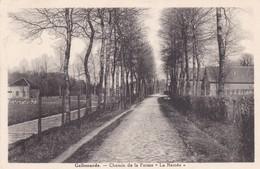 619 Gallemarde Chemin De La Ferme (la Ramee) - Belgium