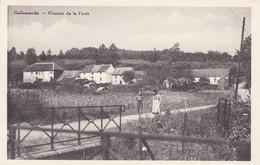 619 Gallemarde Chemin De La Foret - Belgique