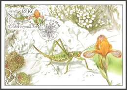 Czech Republic - Large Grasshopper (Saga Pedo) And Variegated Iris (Iris Variegata), Maximum Card, 2010 - Other