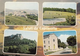 12473-SALUTI DA CAPRACOTTA(ISERNIA)-FG - Saluti Da.../ Gruss Aus...