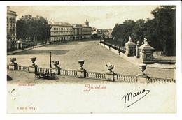 CPA - Carte Postale -  Belgique Bruxelles - Vue Sur Le Parc Royal-1906 VM3483 - Forêts, Parcs, Jardins