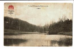 CPA - Carte Postale -  Belgique Molenbeek- Grand Etang 1909 VM3486 - Forêts, Parcs, Jardins