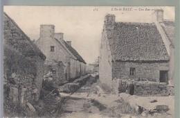 Finistère  Ile De Batz - Ile-de-Batz