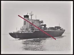 LE HAVRE - Photo Originale _ Marine Marchande _ Cargo La Fayette _ Chantiers Beliard & Crighton _ Tampon En Relief Scan2 - Bateaux