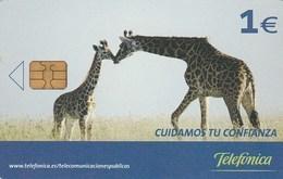 Spain - Cuidamos Tu Confianza - Jirafa Y Cria - P-586 - Spagna