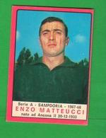 Calcio PANINI Sampdoria MATTEUCCI E. Figurine VALIDA Calciatori - Edizione Italiana