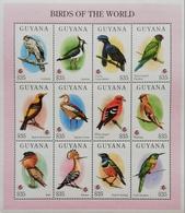 Guyana 1994 Birds Sheet Of 12 - Guyana (1966-...)