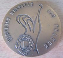 Important Médaille En Bronze Du Lions Club : District Multiple 103 France / Hommage Aux Lions De France - Professionnels / De Société