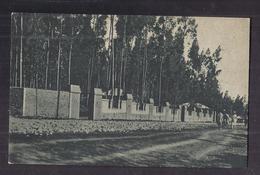 CPSM ETHIOPIE - ADDIS ABEBA - Il Parco - TB PLAN Parc - Libellé En Italien - ITALIE - Etiopía