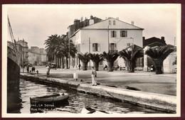 La Seyne-sur-Mer * Rue Hoche Les Palmiers * VAR 83500 * La Seyne Sur Mer Arrondissement De Toulon - La Seyne-sur-Mer