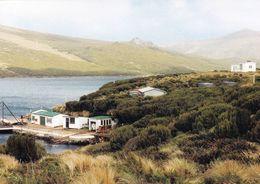 1 AK Campbell Island Zu New Zealand * Subantarctic Islands - Meteorological Station - Seit 1998 UNESCO Weltnaturerbe * - Neuseeland