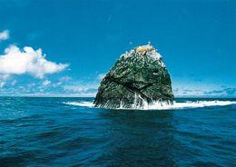 1 AK Rockall Island * Felseninsel Im Nordatlantik Beansprucht Von Großbritannien, Island, Irland Und Den Färöer Inseln * - Ansichtskarten