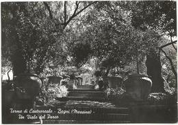 W3388 Castroreale Terme (Messina) - Bagni - Un Viale Del Parco / Viaggiata 1953 - Italia