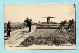 AALST - Le Chemin Des Moulins - Aalst