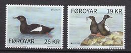 Faroer Eilanden - 2019