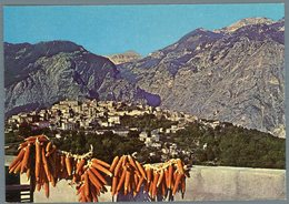 °°° Cartolina N. 87 Castiglione Messer Raimondo Panorama Nuova °°° - Teramo