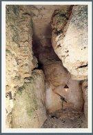 °°° Cartolina N.12 Santuario Francescano La Foresta Grotta Di S. Francesco Nuova °°° - Rieti