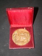 """Médaille En Bronze """" COOPERATION """" Avec écrin - Professionnels / De Société"""