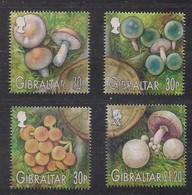 Gibraltar 2003 Yvertnr Bloc 57 FDC Oblitéré  Cote 11,00 Euro Flore Champignons Paddestoelen Mushrooms - Gibraltar