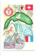 CARTE MAXIMUM 1985 Sté DE SAUVETAGE DU LAC LEMAN - Cartes-Maximum