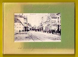 BORGERHOUT IN OUDE PRENTKAARTEN ©1972 PRACHTIG NASLAGWERK VOOR POSTKAARTEN VERZAMELAARS Antwerpen Geschiedenis Z368 - Antwerpen