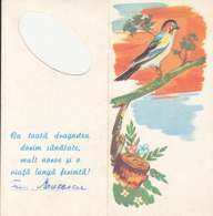 BIRDS, SONGBIRD, TREE BRANCH, ILLUSTRATION, TELEGRAMME, 1972, ROMANIA - Songbirds & Tree Dwellers