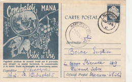 AGRICULTURE, PESTS ADVERTISING, GRAPES, DOWNY MILDEW, PC STATIONERY, ENTIER POSTAL, 1959, ROMANIA - Agriculture