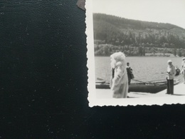Homme  Déguisement Eisbär Ours Blanc Polaire Lieu à Déterminer 5 Photos Originales En Noir-blanc - Personnes Anonymes