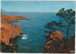 R 36:  Var :  BOULOURIS -  SANTA LUCIA  : Vue  1966 - France