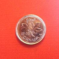 1 Cent Münze Aus Kanada Von 1998 (vorzüglich) - Canada