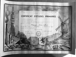 ETAT FRANCAIS   DIPLOME CERTIFICAT D'ETUDES PRIMAIRES 194 - Diploma & School Reports