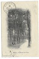 33-BLAYE-Carte Lettre - Promenade Des Cônes...1913  Animé - Blaye