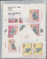 Mazedonien: 1995/2000, Accumulation With Mostly MNH Sets, Souvenir And Minature Sheets, Additionally - Mazedonien