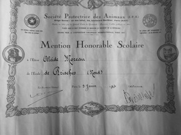 SOCIETE PROTECTRICE DES ANIMAUX ( SPA) MENTION HONORABLE SCOLAIRE 1944 - Diploma & School Reports