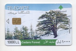 Cedars Forest 2009 Used Phonecard  Lebanon , Liban  Libanon - Liban