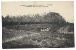 """33-BOUSQUET (Cavignac)-Verger M. SEUREAU, Dépositaire """"EVERITE""""... Animé - Autres Communes"""