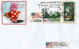 USA.  Année Du Cochon. Enveloppe Souvenir De New-York 2007 - Chinees Nieuwjaar