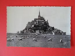 MANCHE  Mont Saint Michel  Vue Générale - Le Mont Saint Michel