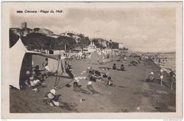 CANNES PLAGE DU MIDI TBE - Cannes