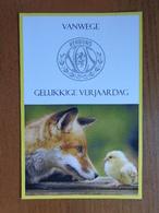 Vos En Kuikentje --> Beschreven - Animals