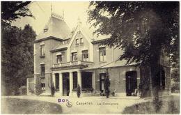 CAPPELLEN - Les Châtaigniers - Kapellen