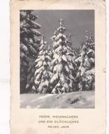 FROHE WEIHNACHTEN UND EIN GLUCKLICHES NEUES JAHR. CIRCULEE 1965 GERMANY TO ARGENTINE - BLEUP - Año Nuevo