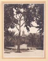 PALERMO PALERME SICILIA VILLA BONANNO 1926 Photo Amateur Format 7,5 Cm X 5,5 Cm - Luoghi