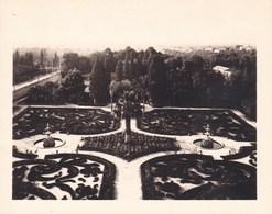 PALERMO PALERME SICILIA La Favorite Les Jardins 1926 Photo Amateur Format 7,5 Cm X 5,5 Cm - Luoghi