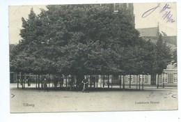 Tilburg Lindeboom Heuvel - Tilburg